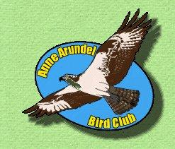 Anne Arundel Bird Club