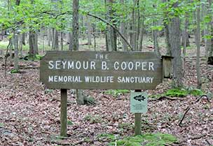Seymour B. Cooper Sanctuary - Maryland Ornithological Society - Maryland Ornithological Society